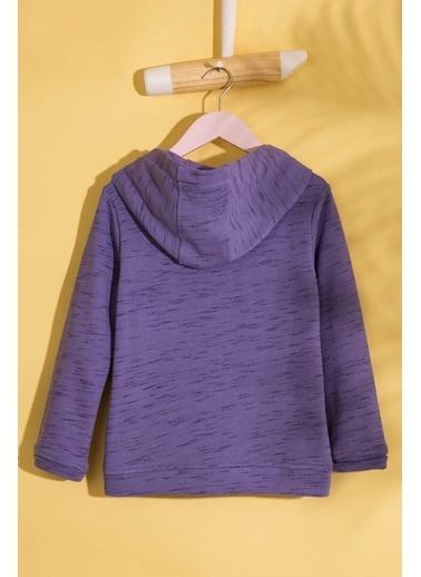 U.S.Polo Assn. Sweatshirt Pembe